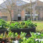 Rainier Beach Learning Garden Planning Meeting: March 23