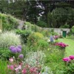 Garden GOO