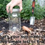Beet Box: Soil Test & Fertilizer Tea