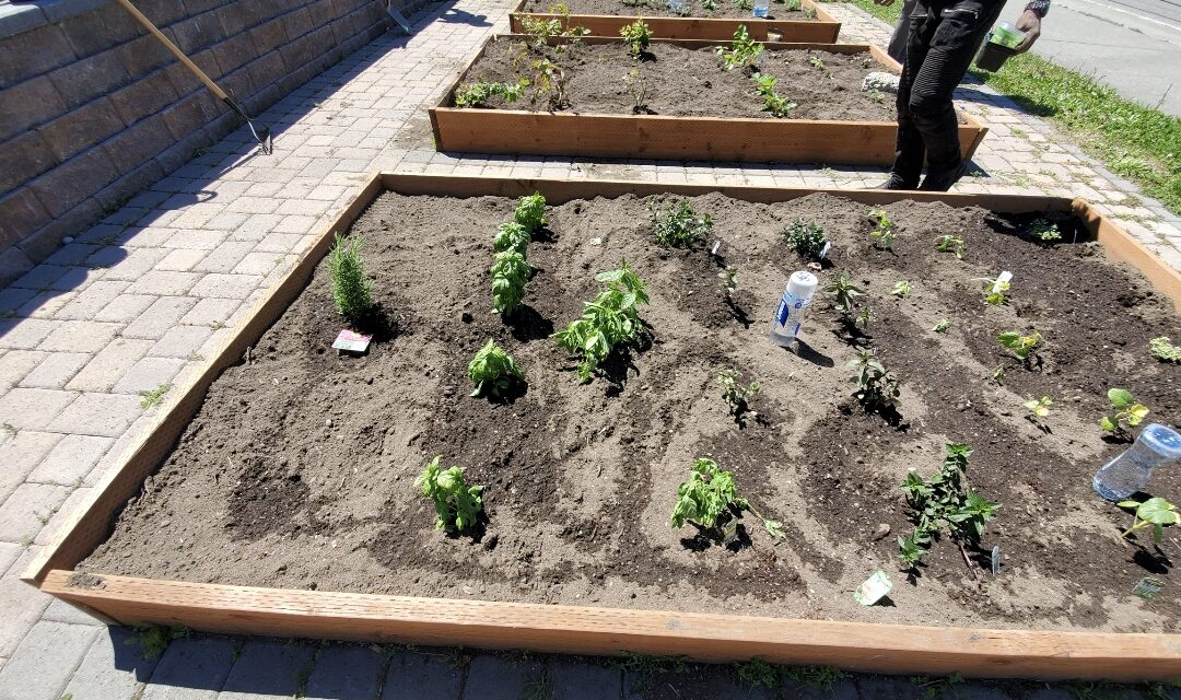 RBAC Garden Update